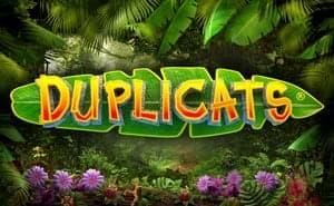 duplicats slot game