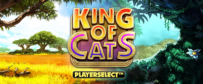 King of Cats Playerselect