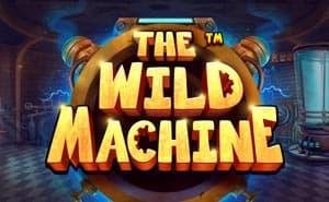 the wild machine casino game